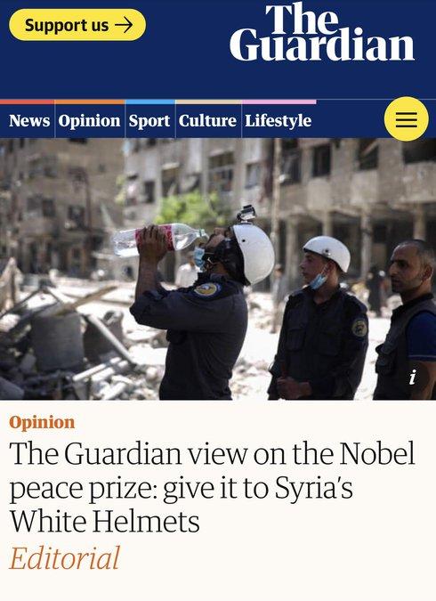 Screen shot of Guardian article